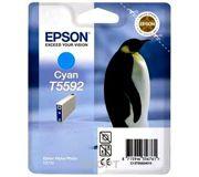 Фото Epson C13T55924010