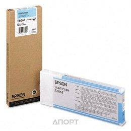 Epson C13T606500