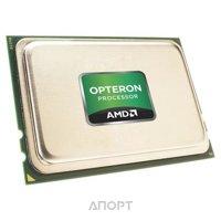Фото AMD Opteron 6276