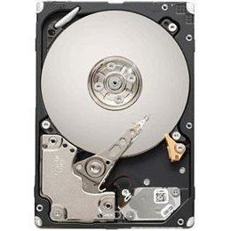 Seagate ST9600104SS