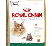 Фото Royal Canin Maine Coon 31 Adult 0,4 кг
